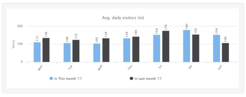 Summary Report Daily Visitor Count